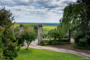 Jardin avec magnifique vue sur les vignes - [Location Langoiran Bordaux Ligassonne]