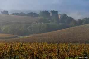 Vue sur les Vignes et le Château de Langoiran - [Location Langoiran Bordaux Ligassonne]